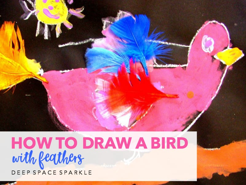 How To Draw A Bird with Feathers