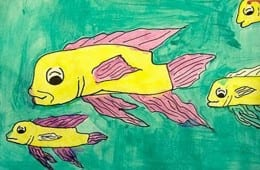 Focal Point Fish