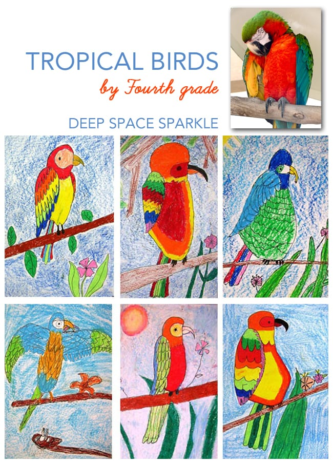 Parrot-and-tropical-bird-art-lesson-gallery