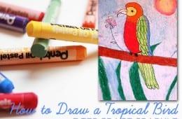 Parrot Art Projects