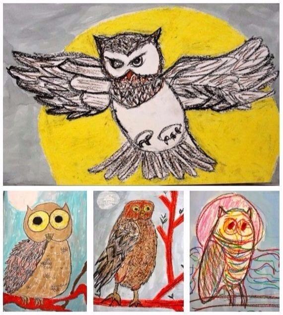 Oil Pastel Owl Gallery