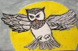 Oil Pastel Owl Art Lesson