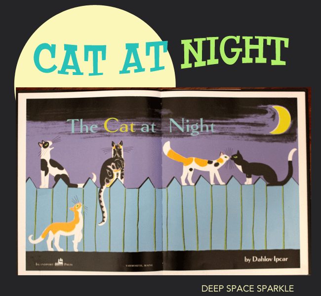 Cat-at-Night-picture-book