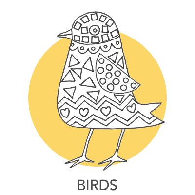 bird-projects-1