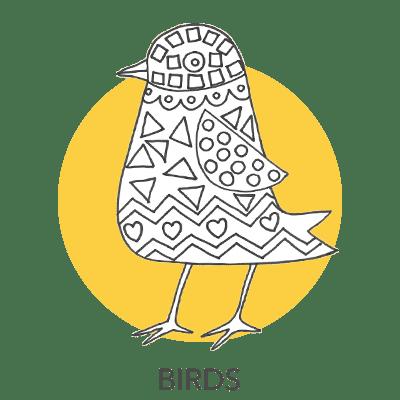 bird-projects-1