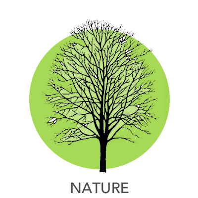 nature-drawing-2