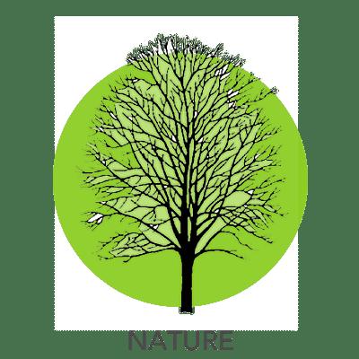 nature-drawing-2