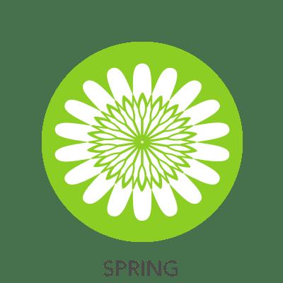 spring-drawing