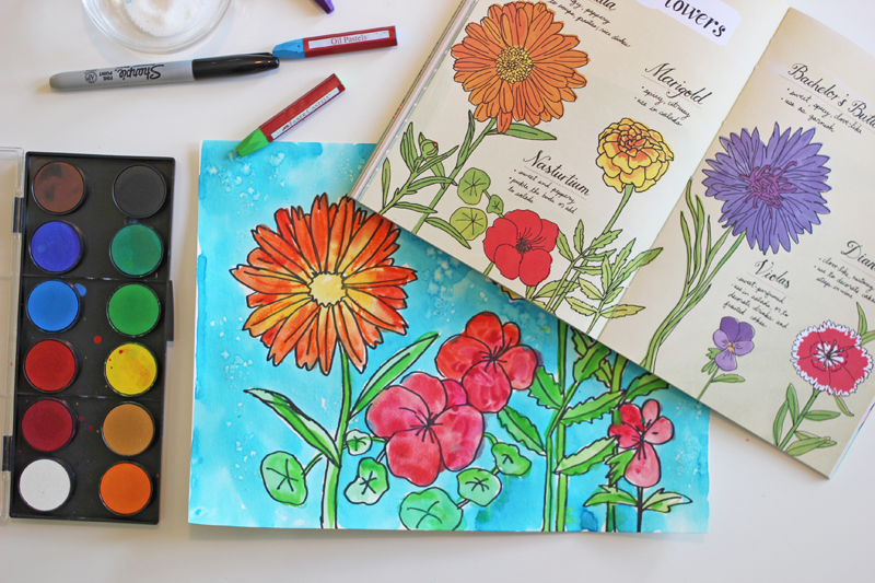 How to draw garden flowers art project video